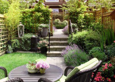 69099850 - small townhouse perennial summer garden